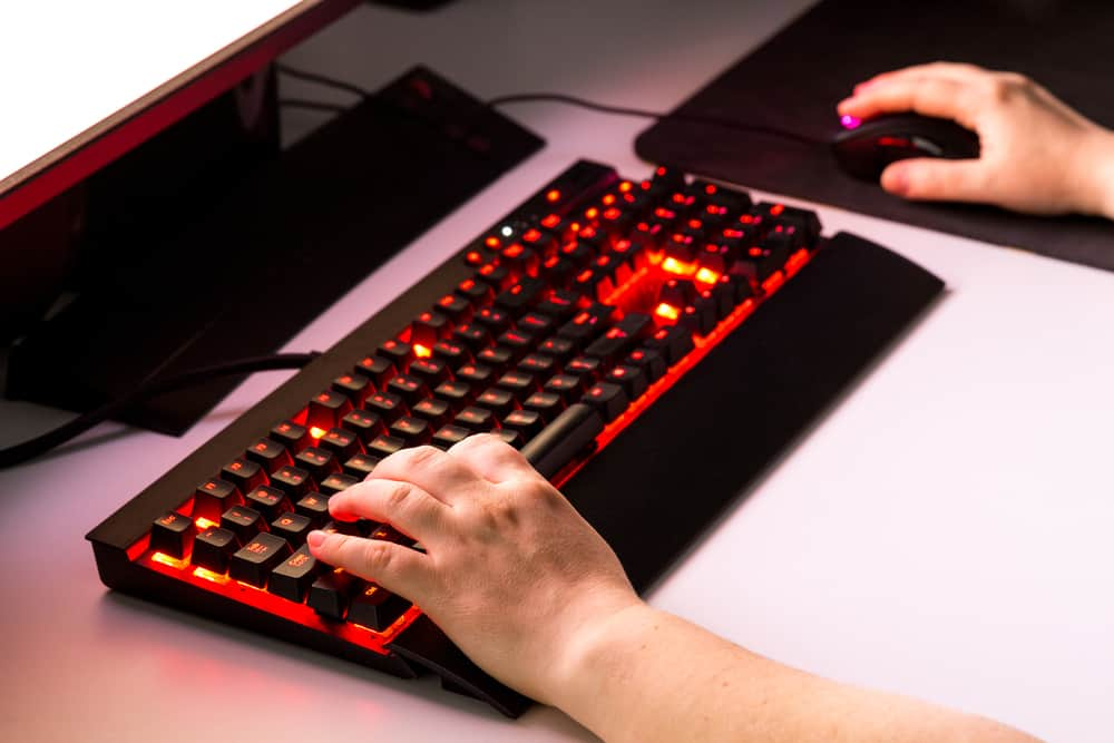 Female hands playing computer game with gaming gear.